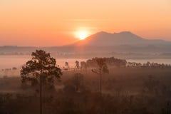 Nascer do sol acima da montanha e da floresta enevoada na manhã Foto de Stock
