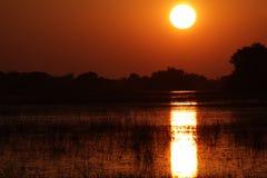 Nascer do sol africano Foto de Stock Royalty Free