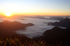 Nascer do sol agradável na manhã na montanha do fá do qui de Phu, Chiang Rai, Tailândia Imagens de Stock