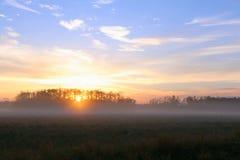 Nascer do sol do amanhecer sobre um campo de exploração agrícola com névoa pesada na grama e nas árvores imagens de stock