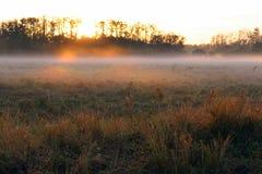 Nascer do sol do amanhecer sobre um campo de exploração agrícola com névoa pesada no horizonte imagem de stock
