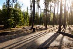 Nascer do sol após a chuva no parque de Yellowstone imagem de stock royalty free
