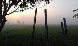 Nascer do sol bonito Fotografia de Stock
