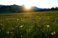 Nascer do sol bonito nas dolomites Imagem de Stock