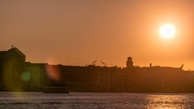 Nascer do sol bonito no canal grande sobre Veneza perto do timelapse do quadrado de San Marco Vista da igreja do della de Santa M vídeos de arquivo