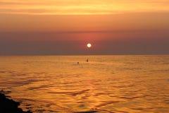 Nascer do sol bonito no litoral com as ondas da calma e céu roxo e gaivotas claros da manhã que voam sobre a água Imagem de Stock Royalty Free
