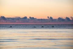 Nascer do sol bonito no mar na praia selvagem Fotografia de Stock Royalty Free