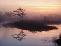 Nascer do sol bonito no pântano de Kakerdaja Fotografia de Stock Royalty Free
