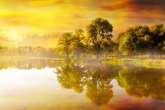 Nascer do sol bonito no parque Trojan em Rainier Oregon fotografia de stock royalty free