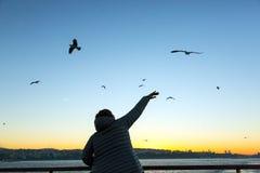 Nascer do sol brilhante e mulher que acenam com a mão que dá boas-vindas a gaivota de mar Fotografia de Stock