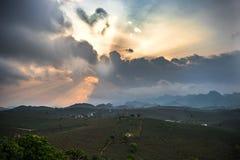 Nascer do sol cedo no arroz do vale Fotos de Stock