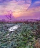 Nascer do sol colorido do outono Fotos de Stock Royalty Free