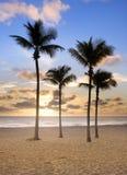 Nascer do sol colorido em Miami Beach Florida Imagem de Stock