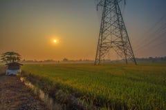Nascer do sol com campo do arroz fotografia de stock royalty free