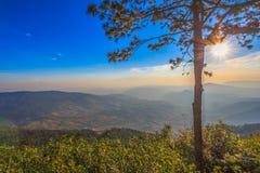 Nascer do sol com névoa na manhã imagens de stock royalty free