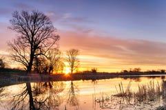 Nascer do sol com nuvens coloridas sobre uma lagoa selvagem cercada por árvores na manhã do outono Imagens de Stock Royalty Free