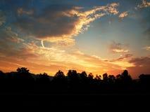 Nascer do sol com silhueta da floresta Imagem de Stock
