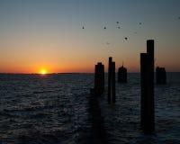 Nascer do sol Currituck Foto de Stock Royalty Free