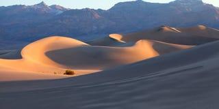 Nascer do sol da duna de areia Foto de Stock Royalty Free