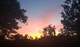 Nascer do sol da manhã de Kauai Fotografia de Stock