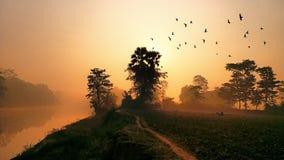 Nascer do sol da manhã do inverno fotos de stock royalty free