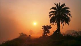 Nascer do sol da manhã do inverno foto de stock