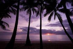 Nascer do sol da praia Imagens de Stock