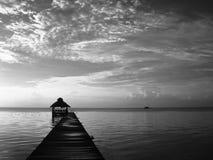 Nascer do sol de Belize em preto e branco Fotografia de Stock