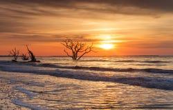 Nascer do sol de Charleston South Carolina Botany Bay fotografia de stock royalty free