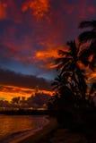 Nascer do sol de Havaí Imagem de Stock