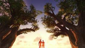 Nascer do sol de observação dos pares entre árvores ilustração royalty free