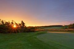 Nascer do sol do campo de golfe Fotografia de Stock Royalty Free