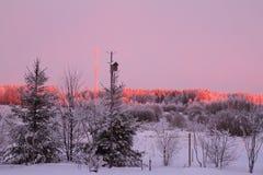 Nascer do sol do inverno Fotos de Stock