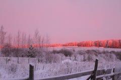 Nascer do sol do inverno Fotos de Stock Royalty Free