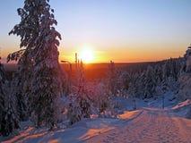 Nascer do sol do inverno Imagens de Stock Royalty Free