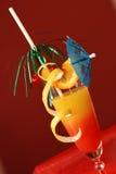 Nascer do sol do Tequila Foto de Stock