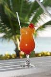 Nascer do sol do Tequila imagem de stock royalty free