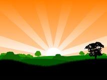 Nascer do sol do verão ilustração royalty free
