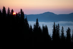 Nascer do sol do verão Fotos de Stock Royalty Free