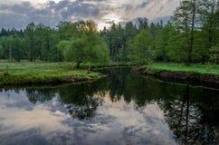 Nascer do sol do verão sobre o rio Fotografia de Stock