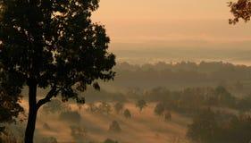 Nascer do sol dourado calmo sobre um vale da névoa Fotografia de Stock