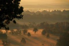 Nascer do sol dourado calmo sobre um vale da névoa Fotos de Stock Royalty Free