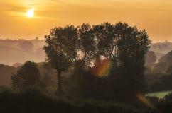 Nascer do sol dourado com névoa imagem de stock