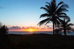 Nascer do sol dourado no Oceano Atlântico com as palmeiras na praia imagens de stock royalty free