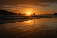 Nascer do sol dourado sobre a praia fotografia de stock royalty free