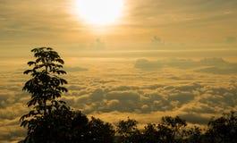 Nascer do sol e névoa imagens de stock