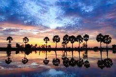 Nascer do sol em Chau Doc, Vietname fotografia de stock