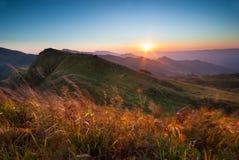 Nascer do sol em Doi Pha Tang Imagens de Stock