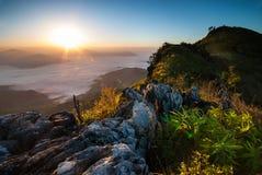Nascer do sol em Doi Pha Tang Fotografia de Stock Royalty Free