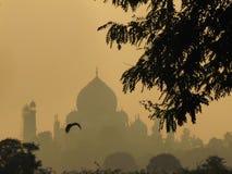 Nascer do sol em Taj Mahal Fotografia de Stock Royalty Free